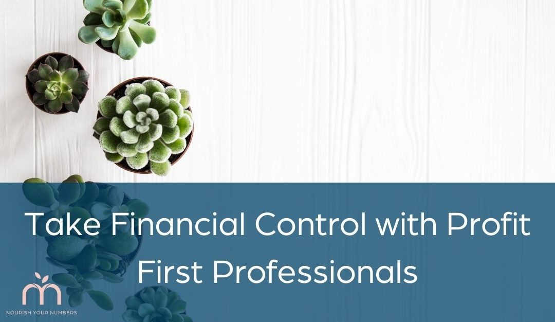 Take Financial Control with Profit First Professionals